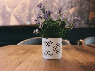 čerstvé květy na stole