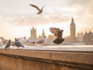 přespání v Londýně