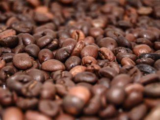Proč jíst kávová zrna?